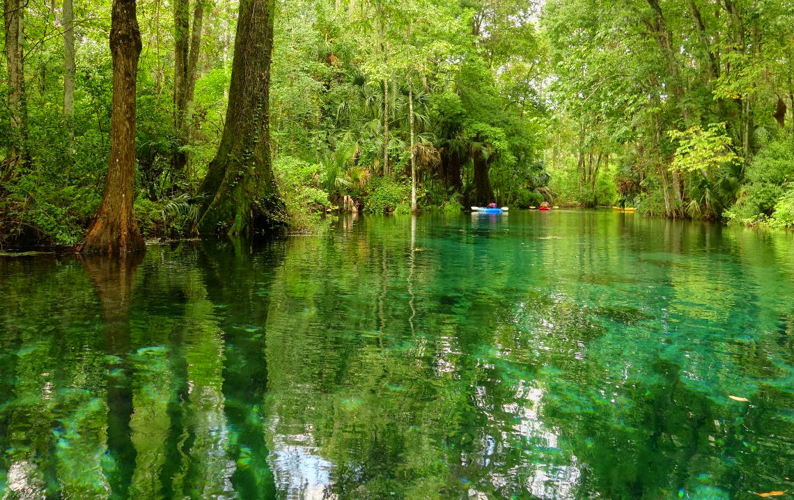 Kayaking at the Silver Springs State Park in Florida